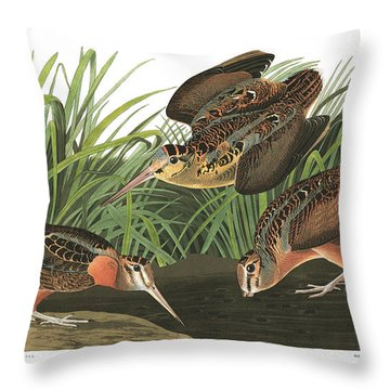 American Woodcock Throw Pillow by MotionAge Designs