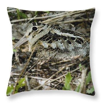 American Woodcock Nesting Throw Pillow