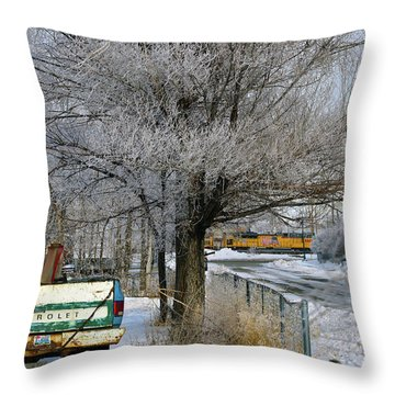 Americana And Hoarfrost Throw Pillow