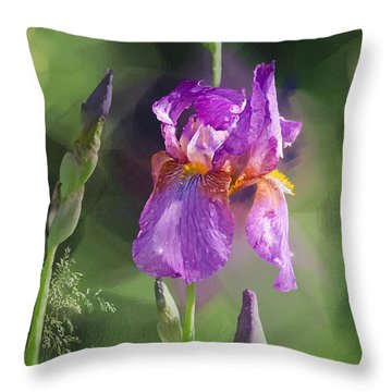 Amethyst Iris 2 Throw Pillow