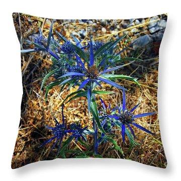 Amethyst Sea Holly Throw Pillow