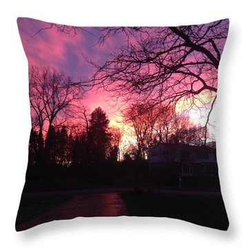 Amethyst Sunset Throw Pillow