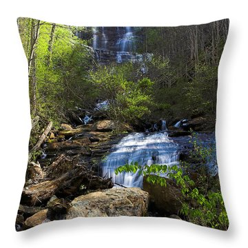 Amicalola Falls Throw Pillow by Dan Wells