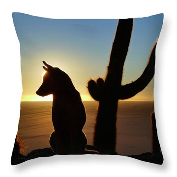 Throw Pillow featuring the photograph Amigo by Skip Hunt