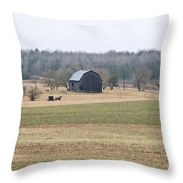 Amish Country 0754 Throw Pillow by Michael Peychich