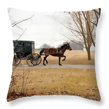 Amish Dream 1 Throw Pillow