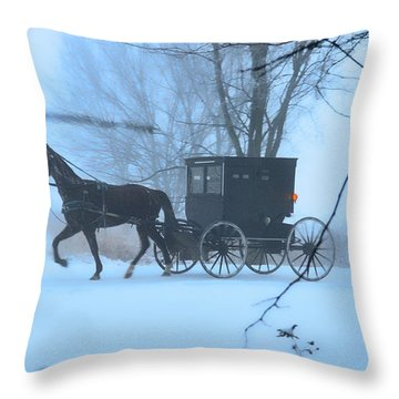 Amish Dreamscape Throw Pillow