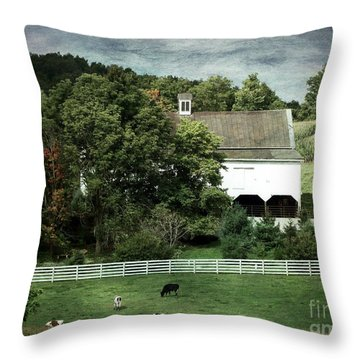 Amish Farm In The Fall With Textures Throw Pillow