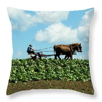 Amish Farmer With Horses In Tobacco Field Throw Pillow
