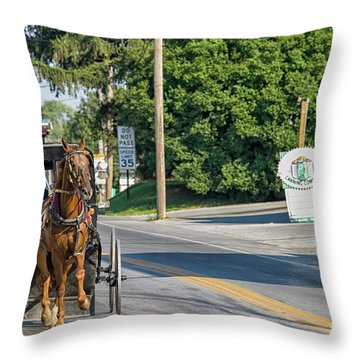 Throw Pillow featuring the photograph Amish Girl On The Road by Patricia Hofmeester
