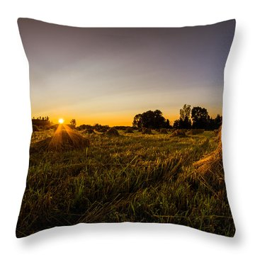 Throw Pillow featuring the photograph Amish Harvest by Chris Bordeleau