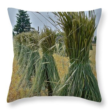 Amish Harvest Throw Pillow