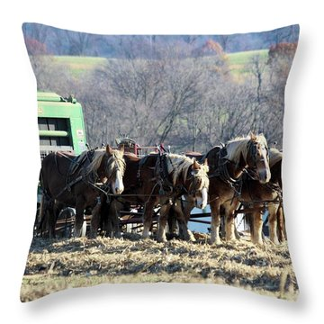 Amish Haymaker In Lancaster County, Pennsylvania Throw Pillow