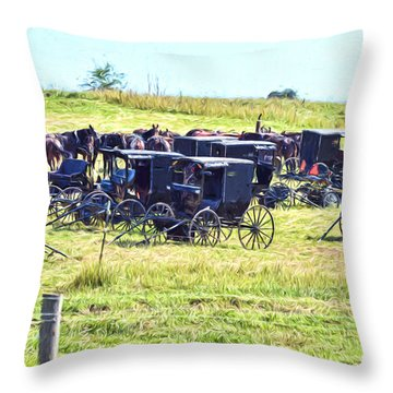Amish Hillside Throw Pillow