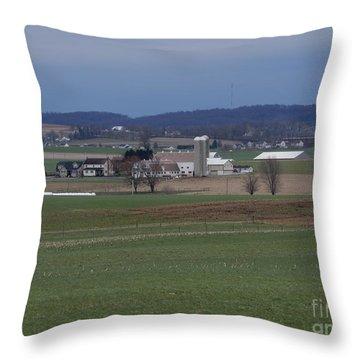 Amish Homestead 125 Throw Pillow