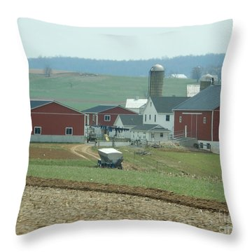 Amish Homestead 6 Throw Pillow