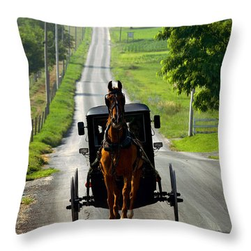 Amish Morning Commute Throw Pillow