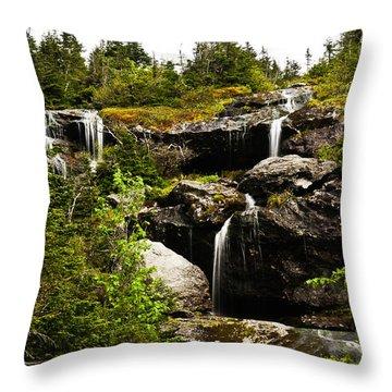 Ammonoosuc Falls Throw Pillow