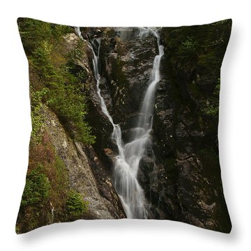 Ammonoosuc Ravine Falls Throw Pillow
