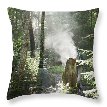 Ammonoosuc Ravine Trail - White Mountains New Hampshire Usa Throw Pillow