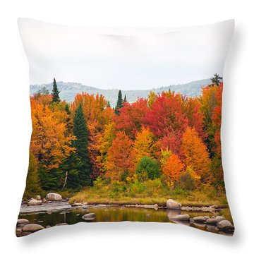 Throw Pillow featuring the photograph Ammonoosuc River by Robert Clifford