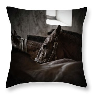 Among Others Throw Pillow by Edgar Laureano