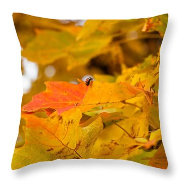 Amongst The Leaves Throw Pillow