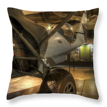 Amphibian Throw Pillow
