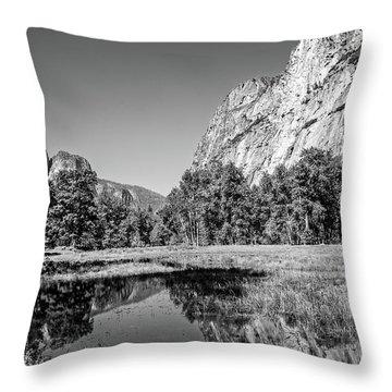 Gamut Throw Pillow by Ryan Weddle