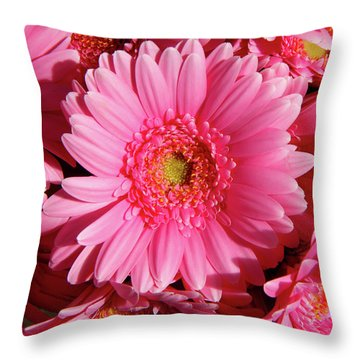 Throw Pillow featuring the photograph Amsterdam In Pink by KG Thienemann