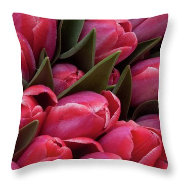 Amsterdam Red Tulips Throw Pillow by Jill Smith