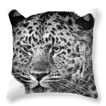 Amur Leopard Throw Pillow by John Edwards