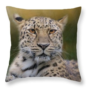Throw Pillow featuring the photograph Amur Leopard by Patti Deters
