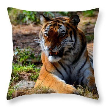 Throw Pillow featuring the mixed media Amur Tiger 5 by Angelina Vick