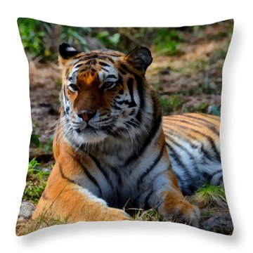 Throw Pillow featuring the mixed media Amur Tiger 8 by Angelina Vick
