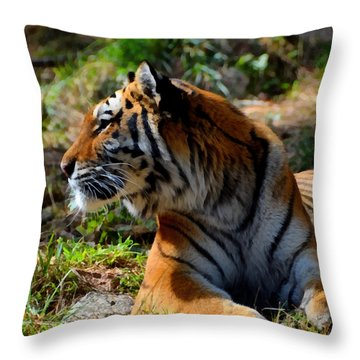 Throw Pillow featuring the mixed media Amur Tiger 9 by Angelina Vick