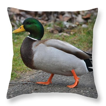 An Afternoon Stroll Throw Pillow
