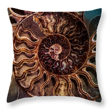 An Ancient Shell Throw Pillow