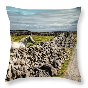 An Aran Horse Throw Pillow
