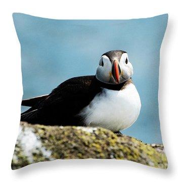 An Atlantic Puffin Throw Pillow