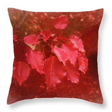 Throw Pillow featuring the photograph An Autumn Bunch by Elaine Teague