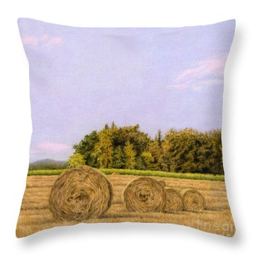 An Autumn Evening Throw Pillow