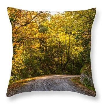 An Autumn Landscape - Hdr 2  Throw Pillow