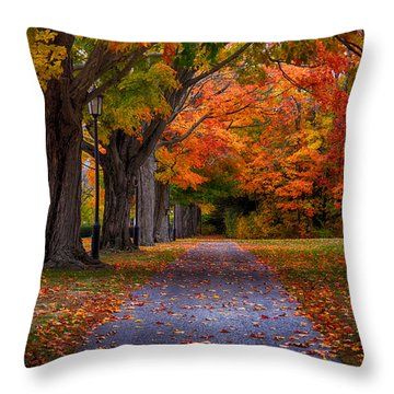 An Autumn Walk Throw Pillow