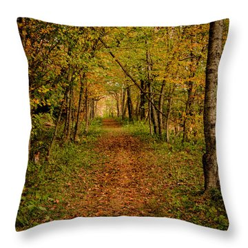 An Autumn's Walk Throw Pillow
