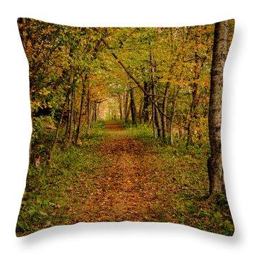 An Autumn's Walk Throw Pillow