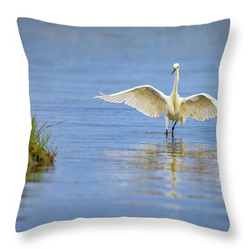 An Egret Spreads Its Wings Throw Pillow by Rick Berk