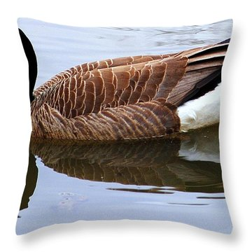 An Elegant Pose Throw Pillow by Frozen in Time Fine Art Photography