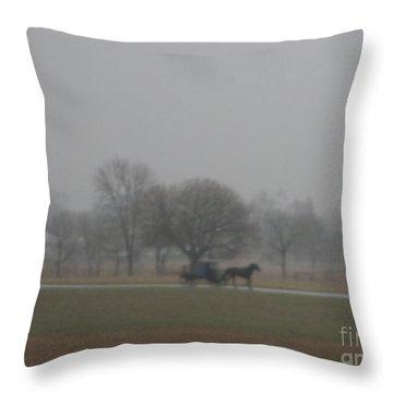 An Evening Buggy Ride Throw Pillow
