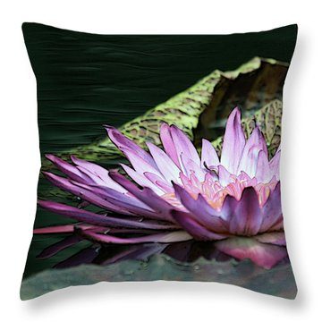 An Evening Glow Throw Pillow by Yvonne Wright